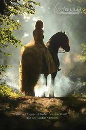 www.bilderbettina …, #AnimalPhotographyfotos #wwwbilderbettina
