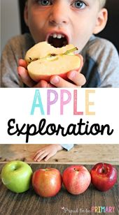 Apple Activities for Preschool Exploration