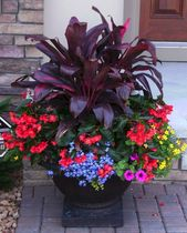 45+ Wonderful Garden Container Best Ideas