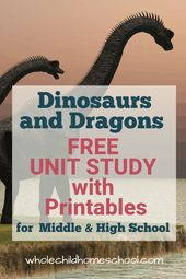 Dinosaurs and Dragons Too Unit Examine for Homeschool Households