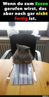 Wenn Sie zum Essen gerufen werden, aber das ist noch nicht fertig ..   – Mein