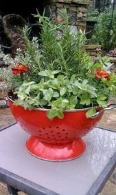 Container Backyard Recipe – Nice Concepts and Ideas for Newbie