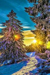 Photo of Winter. Gott ist so kreativ
