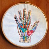Anatomical embroidery: median nerves within the hand