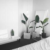 18+ Dazzling Minimalist Interior Color Ideas