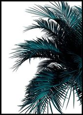 Green Palm Tree Affiche dans le groupe Affiches / …