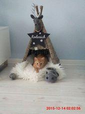 15 Super Fun DIY Cat Zelt Ideen zu verfolgen