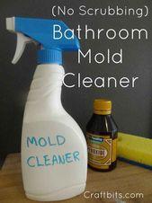 Bad Schimmel Reiniger   – Cleaning Tips