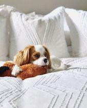 A Good Reason To Sleep In This Weekend Our Roarandrabbit Zigzag Texture Bedding Is Fairtradecertified Handcra Cheap Beach Decor Living Room Trends West Elm