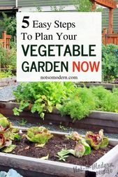 Beginning a backyard can really feel like an enormous endeavor! What to plant, the place, and wh…