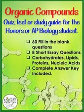 Microeconomic Essay Questions brentbaguio edu ph brentbaguio edu ph Ap  Biology Genetics Essay Questions And Answers