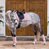 ¿Rosa gris con tachuela rosa? Sí, por favor 🙋♀️ Descubre nuestros cinco mejores paseos …   – Pferde
