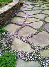 Best DIY Cottage Garden Ideas From Pinterest (24)  – gardens
