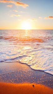 Golden Beach iPhone 5s Wallpaper Download   iPhone Wallpapers, iPad wallpapers O…