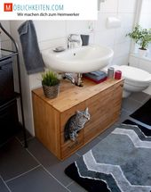 Litter box as washbasin cabinet. End with the cheap plastic litter box and end with scattered cat litter throughout the room. –