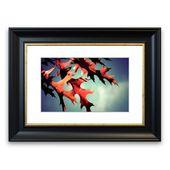 Framed Poster Fall Oak Leaves 2 East Urban Home Size: 50 cm H x 70 cm W, frame type: Black