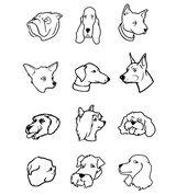 Cartoon Dog Faces Bw Vector Image On Vectorstock Dog Face Cartoon Dog Dogs