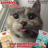 La medida correcta para el ❤ de nuestro 🐱 Nos encanta mimarte y darte el g …   – Alimento y artículos para mascotas