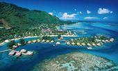 Polynesian Vacation with Airfare