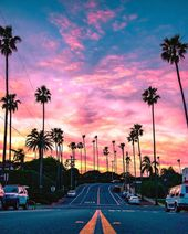 Palm trees and sunset – California, USA