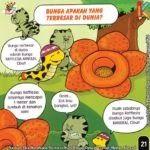Gambar Bunga Raflesia Arnoldi Kartun Gambar Bunga Raflesia Kartun Sigambar Baru Download Download Foto Bunga Rafflesia Arnoldi Kartun Gambar Bunga Gambar