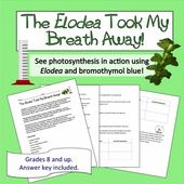Photosynthesis Lab: Elodea and Carbon Dioxide