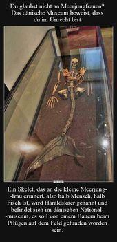 Du glaubst nicht an Meerjungfrauen? Das dänische Museum.. | Lustige Bilder, Spr…