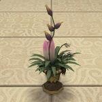 Sylphic Flower Vase Flower Vases Flowers Garden