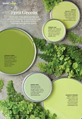 5a01131eeb8024229d59a1a155f0508f  green color palettes green colors - Sherry Chris Better Homes And Gardens