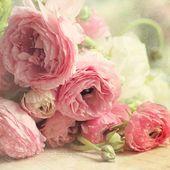 """Rosa Hahnenfuß Fine Art Print, Shabby Chic Dekor, """"Der erste Blumenstrauß"""", Pastell Fotografie, Blumen Fotografie, Rosa, grün, Blumen, quadratischen Druck   – Blumen"""