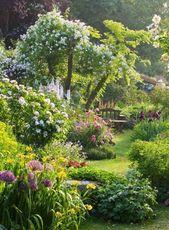 Die Gartenbank – Treffpunkt für Romantik und Entspannung – Garten Pflanzen