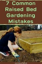 7 Common Mistakes in Raised Bed Gardening  – Homesteading for Beginners