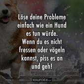 Lösen Sie Ihre Probleme wie ein Hund   – quotes