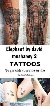 Elephant by david mushaney 2