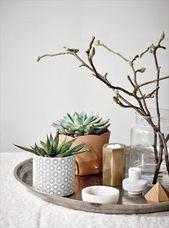 7 Unterschiedlicher Weg zur Dekoration von Zimmerpflanzen im Wohnzimmer –