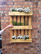 vertical garden plants ideas with pallets