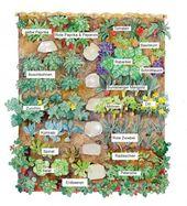 Gemüsegarten: Große Ernte auf kleinem Raum   – Garten