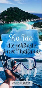 Viaje de esnórquel en Ko Tao: pescado, aire marino y magia