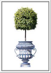 Orangenbaum bei Porzellan Trianon   – wandmalerei