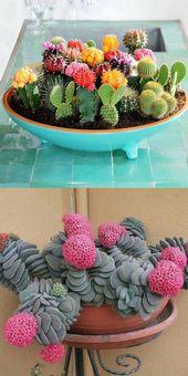 50 Gorgeous Succulent Garden Ideas Fairyblooms — SE