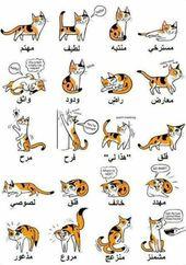 Pin By نوران ايمن On العناية بالحيوانات الاليفة Character Fictional Characters Art