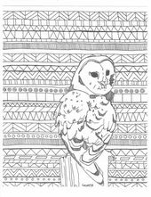 Aztec Adult Coloring Page Printable Digital Owl Tribal Background