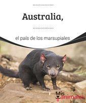 Australia El País De Los Marsupiales Australia Es El País De Los Marsupiales Mamíferos Con Unas Características Muy Particular Marsupiales Australia Paises