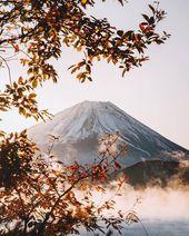 Fernweh Reisen Wälder Wald Bucketlist Berg … – #bucketlist #forest #fuj …   – Japan