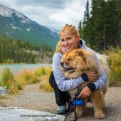 Chow-chow dog in canadian mountains with girl   – Fur babies