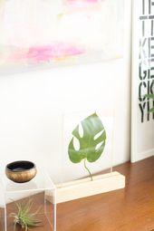 How to Make a Plexiglass Framed Leaf Home Accessory | eHow.com