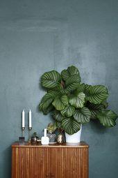 """Wie macht man eine schwimmende Pflanze, ein Kokedama? Dazu weitere Deko- und Stylingideen aus dem neuen Buch """"Living in Green""""   – Home chic"""