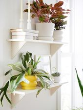 WE Features | Urban Oasis | west elm