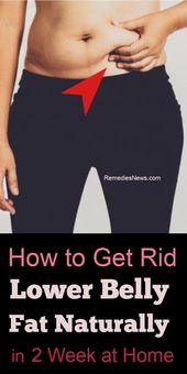How to Get Rid Lower Belly Fat Naturally in 2 Week at Home . Try These Ab Workou…