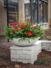 Winter Container Gardening – Get pleasure from Contemporary Flowers and Veggies in Mid-Winter